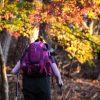 自然林の中を優雅にハイキングしていたら夫婦でプルプルした話