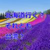 《朗報》やったね!格安航空会社(LCC)Peachで【仙台-札幌/台北】便が就航開始