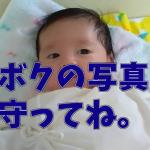 赤ちゃんの写真の整理と保管どうしてる?画像保存ツール・ストレージまとめ