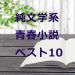 厳選!一度は読みたい純文学系【青春小説】おすすめランキングベスト10